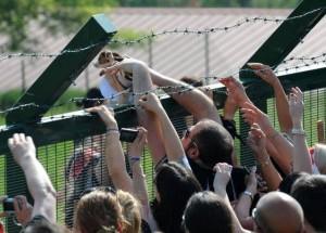 Il momento della liberazione dei primi beagle da Green Hill