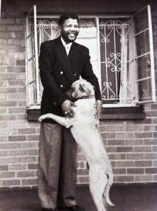 Nelson Mandela con un cane che gli fa le feste
