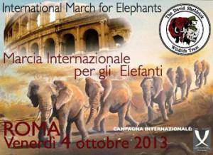 elefanti marcia ita