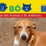 """""""SI MA BÔ"""", associazione italiana per gli animali di Capo Verde"""