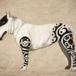 Nello Stato New York proposta una legge per vietare i tatuaggi su animali