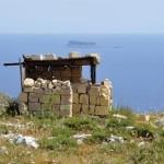 La caccia illegale e la cattura di uccelli a Malta