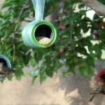 Birdgardening. Dal barattolo alla mangiatoia