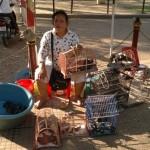 ACTION! Protesta per gli uccelli seviziati in Cambogia
