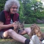 Brian May e il suo amore per gli animali