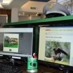 Specie protette: il codice di regolamentazione su internet