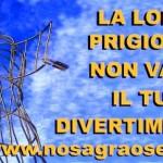 ACTION! NO alla Sagra dei osei di Sacile (PN)