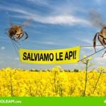 ACTION! Una firma contro i pesticidi che uccidono le api