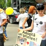 ACTION! Strage d'animali in Moldova. Invia la lettera di protesta