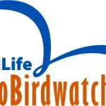 Preparate i binocoli, arriva l'Eurobirdwatch 2013