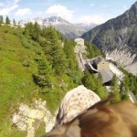 Sulle ali dell'aquila, sopra il Monte Bianco [Video]