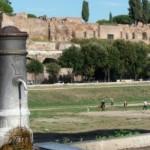 """Roma, ciotole per animali sui """"nasoni"""""""