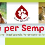 Amici per sempre, la banca del sangue per animali