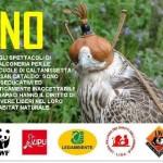 No alla falconeria nelle scuole