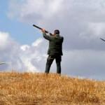 Come difendersi dai cacciatori: la strategia dell'Avc