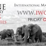 In Marcia per gli elefanti