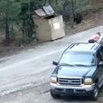 Il recupero degli orsacchiotti [Video]