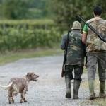 Le vittime innocenti della caccia non fanno notizia