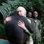 Wounda saluta Jane Goodall prima di tornare nella foresta