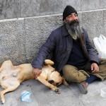 Fia è morto di freddo in strada, il suo cane cerca una famiglia