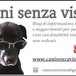Cani senza vista, un blog per aiutarli