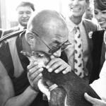 """Dalai Lama: """"Il nostro primo obiettivo…."""""""