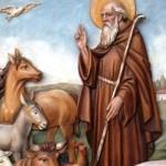 Sant'Antonio Abate, il patrono degli animali domestici