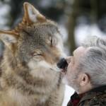 L'uomo-lupo esiste: è l'etologo Werner Freund