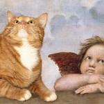 Un gatto rosso tra i capolavori dell'arte
