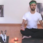 Pancho, il cane che fa yoga [Video]