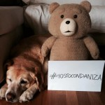 #IostoconDaniza, selfie su Facebook a difesa dell'orsa