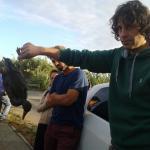 Disastro ambientale a Fiumicino tra campi agricoli e oasi
