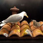 Come convivere con un nido di gabbiani