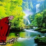 Il Maestro e lo scorpione. Storia zen