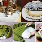 Dal pullover alla cuccia per il pet