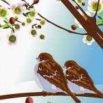 Storie animali. I due passerotti