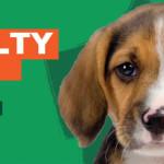 Skimune, il nuovo test cruelty-free