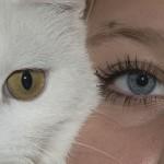 Indagine Eurispes sugli animali in casa