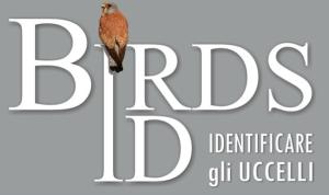 birdsid