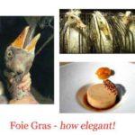 ACTION! Foie gras, firma la petizione e diffondi le info