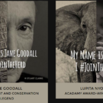Vota no al commercio dell'avorio #JoinTheHerd