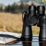 Preparate i binocoli, arriva l'Eurobirdwatch 2017