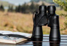 binocoli birdwatching