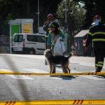 Palazzina crollata a Roma. Recuperati 2 dei 4 gatti dispersi