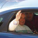 """Papa Francesco: """"Per un animale ferito si prova pena, non misericordia"""""""