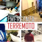 Terremoto e animali. Notizie e appello dai volontari Oipa