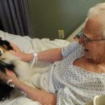 Animali ammessi in ospedali e case di riposo in Lombardia
