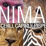Animali, un manuale da scaricare per difenderli