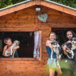 Il sentiero di Ares, associazione per i cani malati terminali