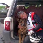 E' morta Laga, cane-eroe nel terremoto di Amatrice